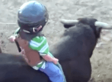 a 3 year old boys first bull ride