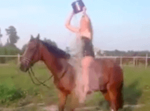 ladt falls off horse als ice bucket