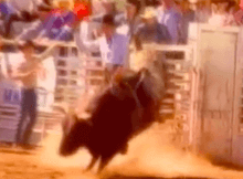 lane frost smokin armidillos red rock video