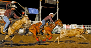 roping red