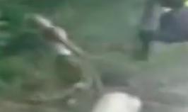 guy with stick kicked