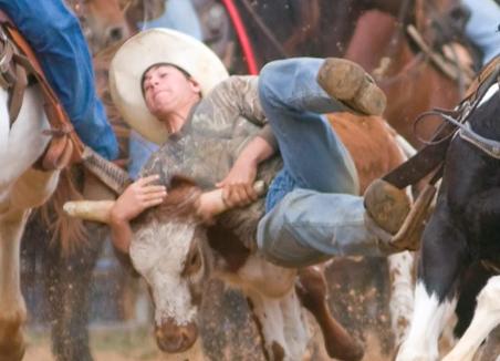 jd steer wreslting