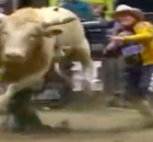 bull leaping : the rodeo cowboy